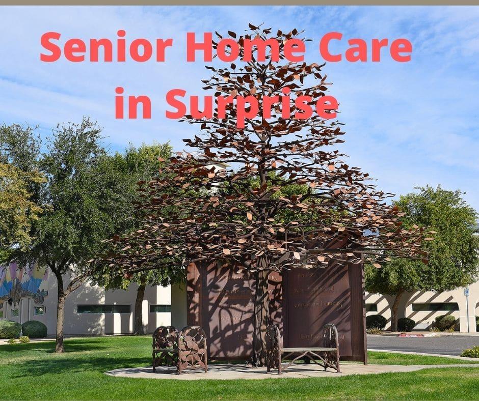 Home Care in Surprise AZ
